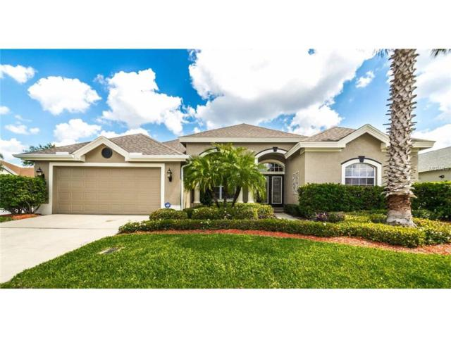 2146 Gold Dust Court, Trinity, FL 34655 (MLS #U7827016) :: Delgado Home Team at Keller Williams