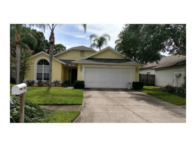 13604 Colorado Place, Tampa, FL 33626 (MLS #U7827168) :: Cartwright Realty