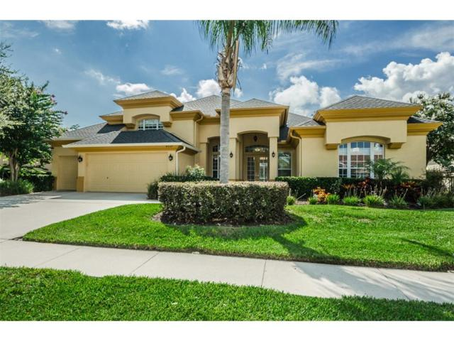 4537 Rutledge Drive, Palm Harbor, FL 34685 (MLS #U7827174) :: Cartwright Realty