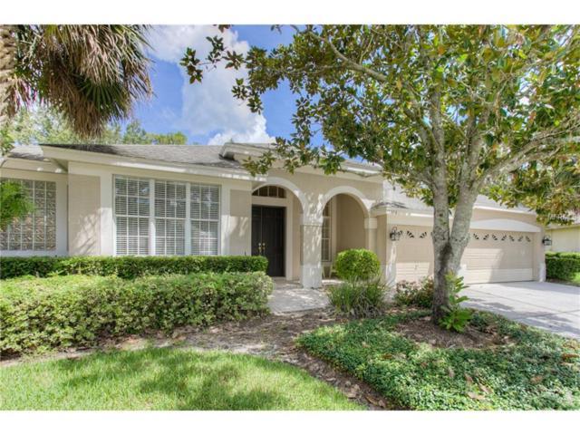 10302 Greenhedges Drive, Tampa, FL 33626 (MLS #U7827194) :: Team Bohannon Keller Williams, Tampa Properties