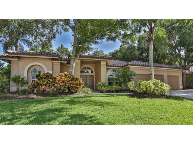 3085 Doxberry Court, Clearwater, FL 33761 (MLS #U7827452) :: Delgado Home Team at Keller Williams