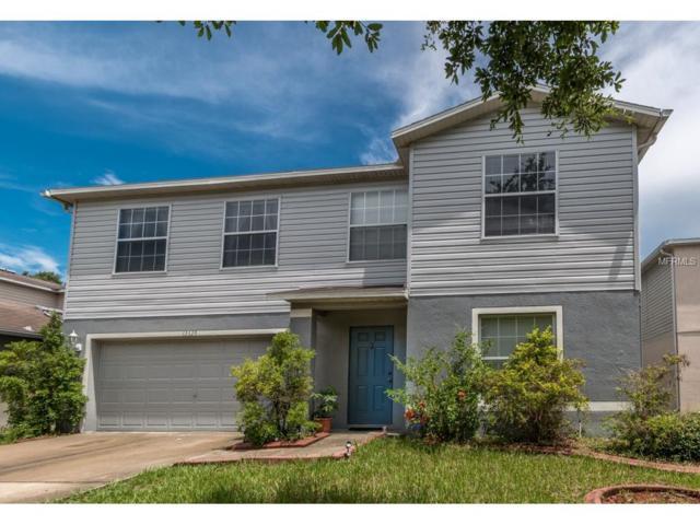 13629 Vanderbilt Road, Odessa, FL 33556 (MLS #U7827485) :: Team Bohannon Keller Williams, Tampa Properties