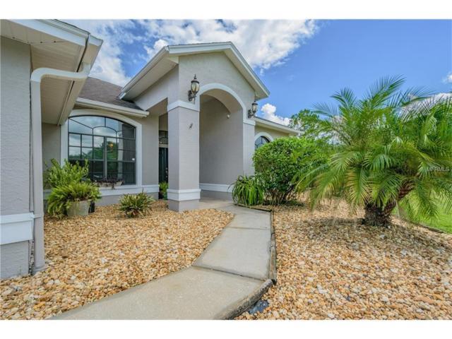 7322 E Richland Street, Wesley Chapel, FL 33544 (MLS #U7827881) :: The Duncan Duo & Associates