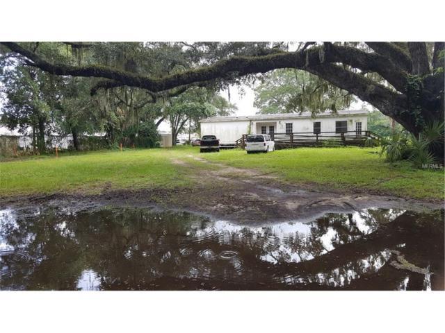 1205 Lakeside Drive, Brandon, FL 33510 (MLS #U7828032) :: The Duncan Duo & Associates