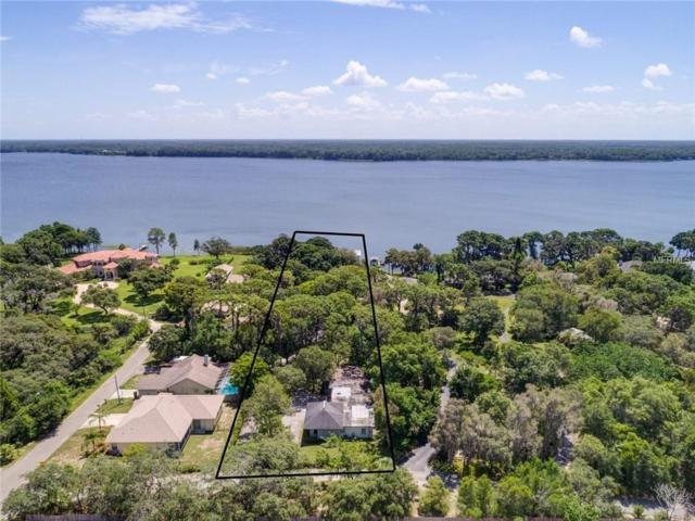 4990 Moore Street, Palm Harbor, FL 34684 (MLS #U7828062) :: Burwell Real Estate