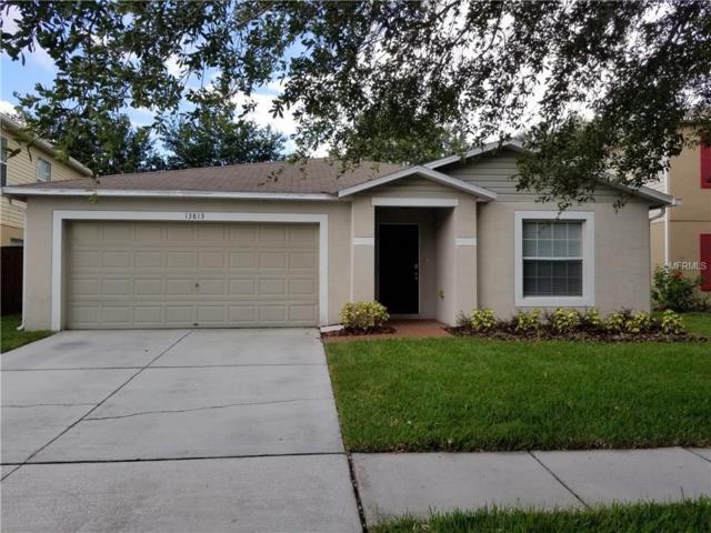 13813 Vanderbilt Road, Odessa, FL 33556 (MLS #U7828065) :: Griffin Group