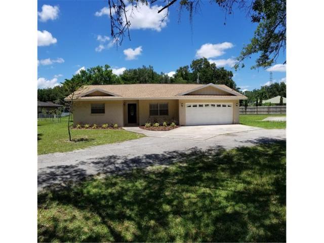 301 Crenshaw Lake Road, Lutz, FL 33548 (MLS #U7828086) :: Arruda Family Real Estate Team