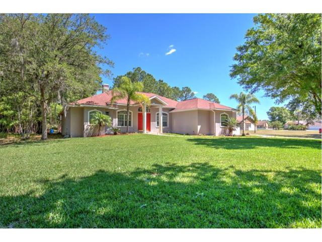 27249 Raven Brook Road, Wesley Chapel, FL 33544 (MLS #U7828415) :: The Duncan Duo & Associates