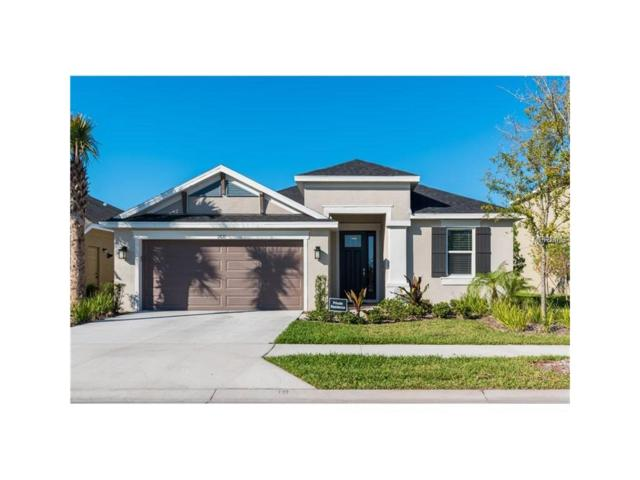 11610 Orange Palm Way, Tampa, FL 33626 (MLS #U7829248) :: The Duncan Duo & Associates