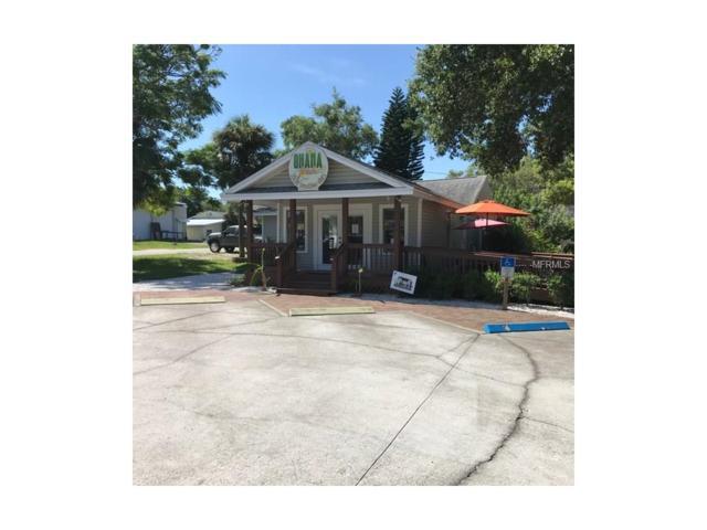 1090 Michigan Avenue, Palm Harbor, FL 34683 (MLS #U7829257) :: KELLER WILLIAMS CLASSIC VI
