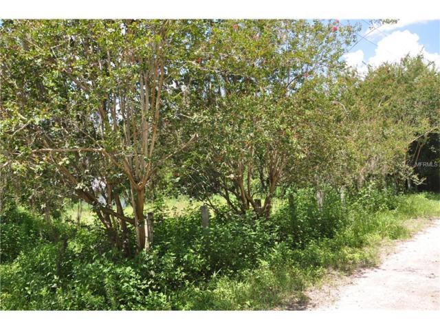 5011 Geiger Cemetery Road, Zephyrhills, FL 33541 (MLS #U7829758) :: The Duncan Duo & Associates