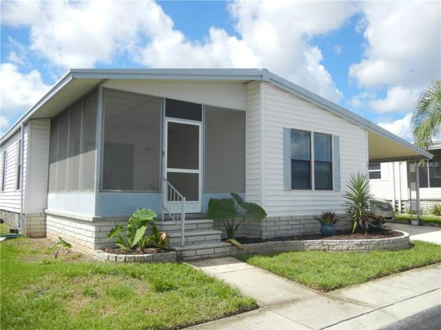 195 Timber Run Drive, Palm Harbor, FL 34684 (MLS #U7829967) :: Team Pepka