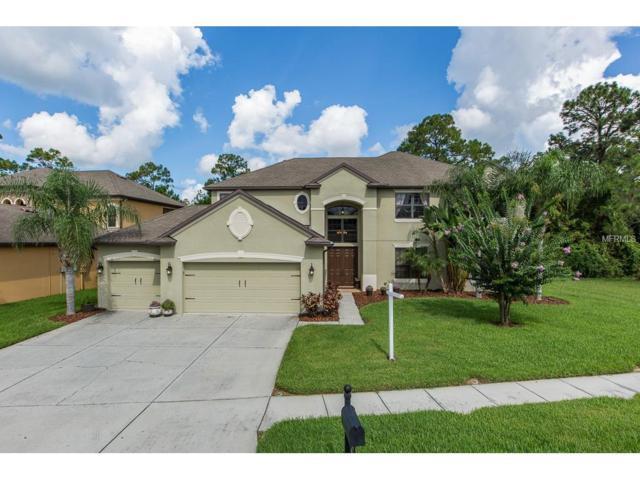 14907 Princewood Lane, Land O Lakes, FL 34638 (MLS #U7829989) :: Arruda Family Real Estate Team