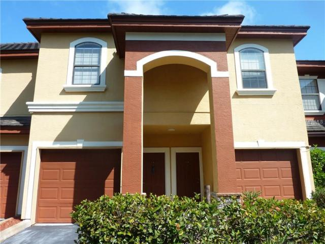 2151 Chianti Place #125, Palm Harbor, FL 34683 (MLS #U7830069) :: Sosa | Philbeck Real Estate Group