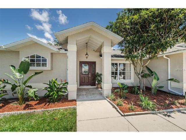 5452 Los Palos Drive, New Port Richey, FL 34655 (MLS #U7830070) :: Griffin Group