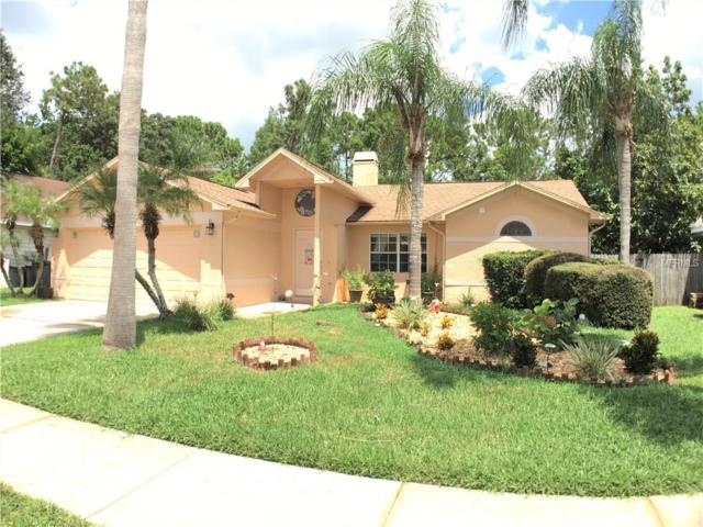 7127 Otter Creek Drive, New Port Richey, FL 34655 (MLS #U7830248) :: Griffin Group