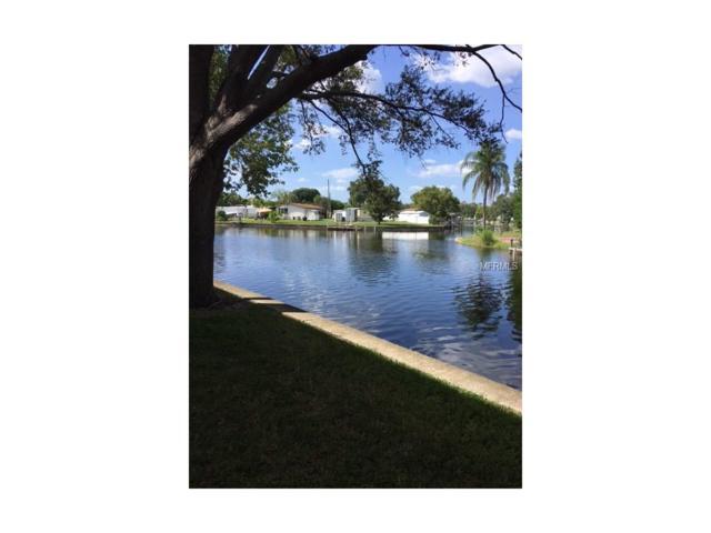 9213 Tudor Drive B105, Tampa, FL 33615 (MLS #U7830339) :: Griffin Group