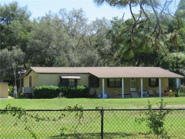 11324 Bruin Dr, New Port Richey, FL 34654 (MLS #U7830358) :: Griffin Group