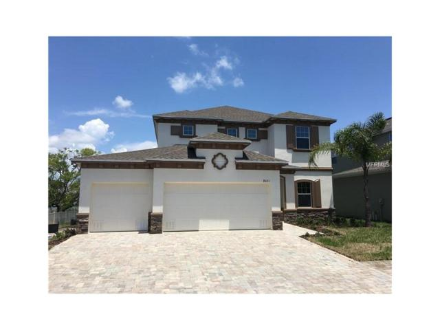 230 Miramar Boulevard NE, St Petersburg, FL 33704 (MLS #U7831512) :: Griffin Group