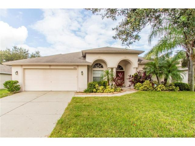 4405 Winding River Drive, Valrico, FL 33596 (MLS #U7831778) :: Griffin Group