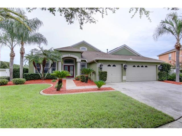 8853 Torchwood, Trinity, FL 34655 (MLS #U7831992) :: Delgado Home Team at Keller Williams