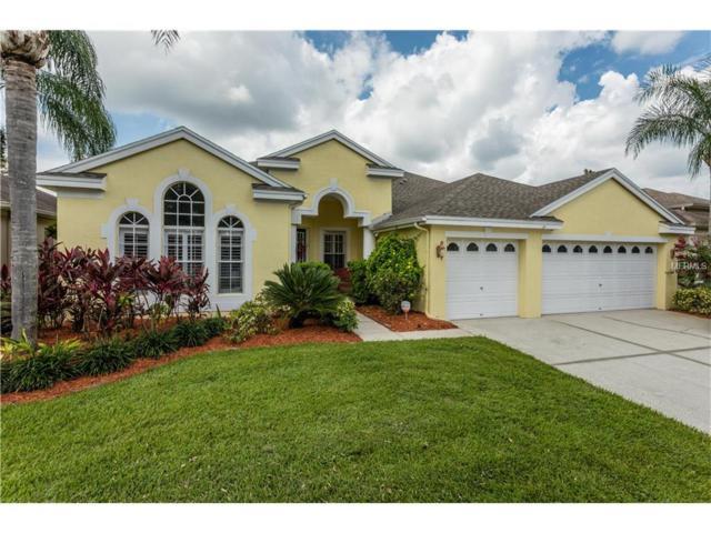 10733 Tavistock Drive, Tampa, FL 33626 (MLS #U7832079) :: The Duncan Duo & Associates