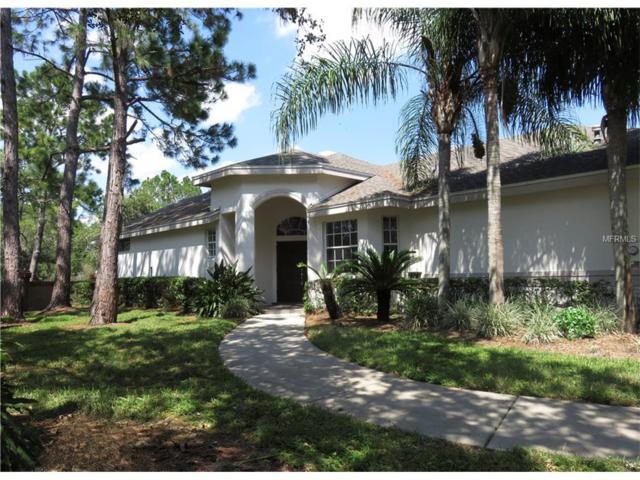 12227 Glencliff Circle, Tampa, FL 33626 (MLS #U7832269) :: The Duncan Duo & Associates