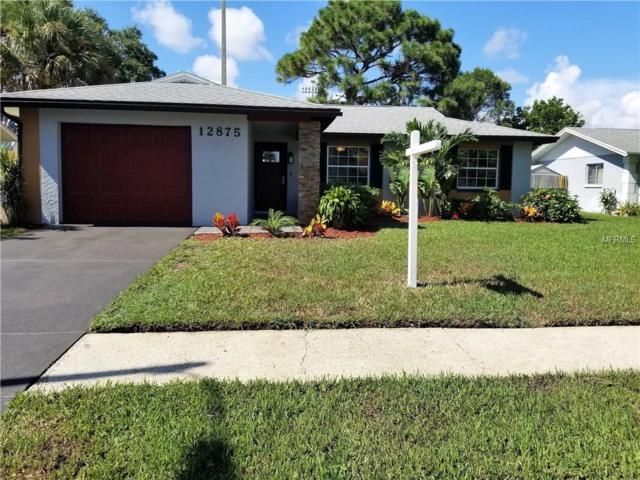12875 83RD Avenue, Seminole, FL 33776 (MLS #U7832435) :: Revolution Real Estate