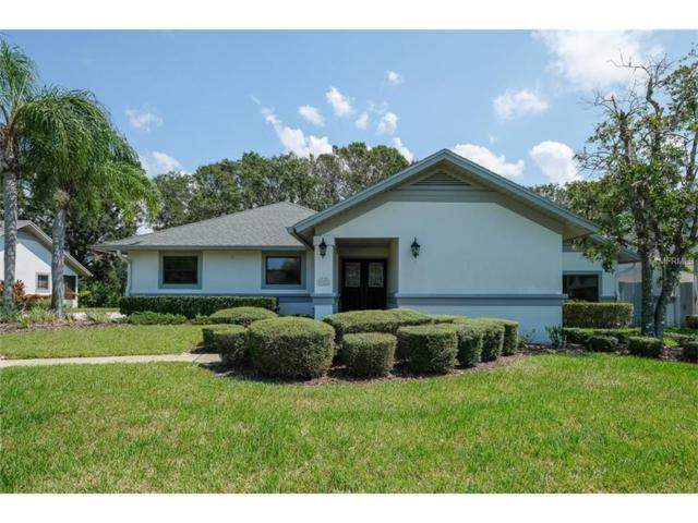 922 Gullane Drive, Tarpon Springs, FL 34688 (MLS #U7832502) :: G World Properties