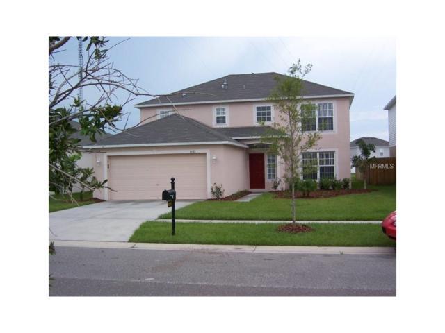 10312 Frog Pond Drive, Riverview, FL 33569 (MLS #U7832511) :: Team Bohannon Keller Williams, Tampa Properties