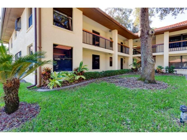 2002 Hammock Pine Boulevard #2002, Clearwater, FL 33761 (MLS #U7832603) :: Revolution Real Estate