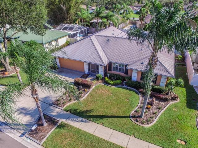 15107 Willowdale Road, Tampa, FL 33625 (MLS #U7832651) :: Cartwright Realty