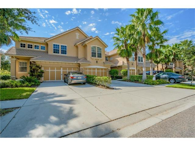 14529 Mirabelle Vista Circle, Tampa, FL 33626 (MLS #U7832653) :: Cartwright Realty
