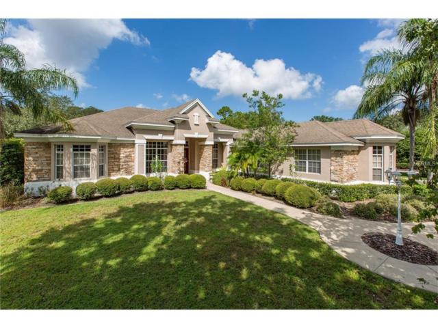 102 Silver Moss Lane, Tarpon Springs, FL 34688 (MLS #U7832702) :: Revolution Real Estate