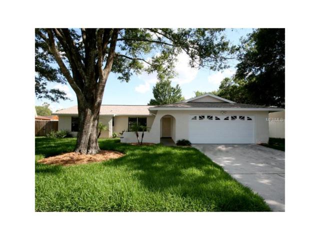 503 Cedar Grove Drive, Brandon, FL 33511 (MLS #U7832711) :: Griffin Group