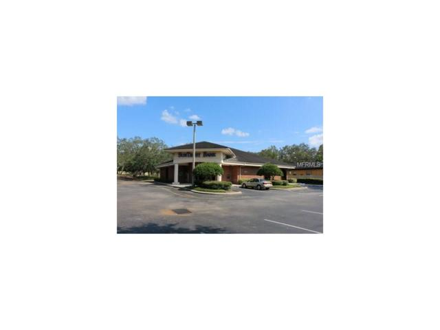 11253 N 56TH Street, Temple Terrace, FL 33617 (MLS #U7832721) :: Team Bohannon Keller Williams, Tampa Properties