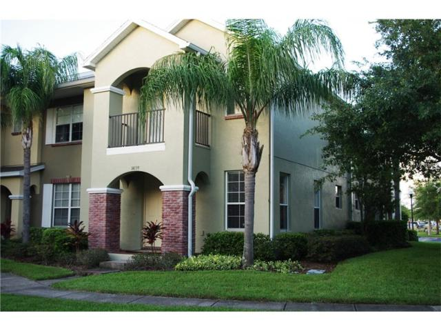 14139 Stilton Street, Tampa, FL 33626 (MLS #U7832843) :: Cartwright Realty