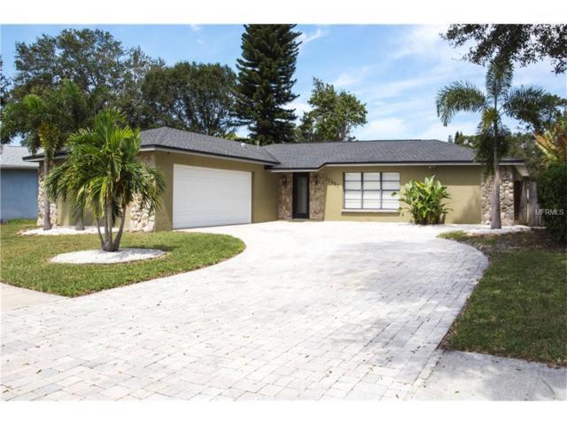 12057 96TH Place, Seminole, FL 33772 (MLS #U7832850) :: The Duncan Duo & Associates