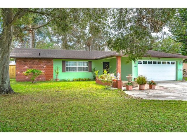 1283 Druid Road E, Clearwater, FL 33756 (MLS #U7832937) :: Delgado Home Team at Keller Williams
