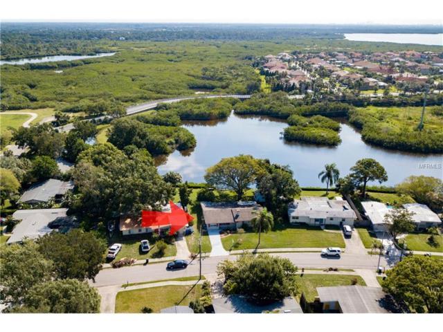 403 Country Club Drive, Oldsmar, FL 34677 (MLS #U7832976) :: Delgado Home Team at Keller Williams