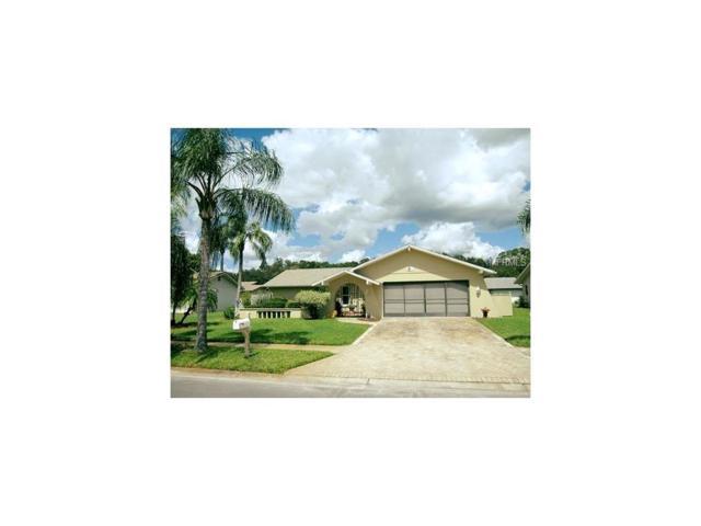 8621 Bridgewater Drive, New Port Richey, FL 34655 (MLS #U7833007) :: Griffin Group