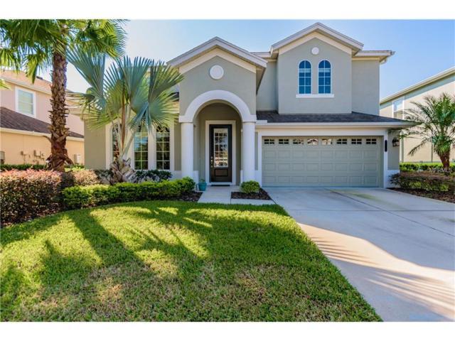 8104 Savannah Point Ct, Tampa, FL 33647 (MLS #U7833657) :: Team Bohannon Keller Williams, Tampa Properties