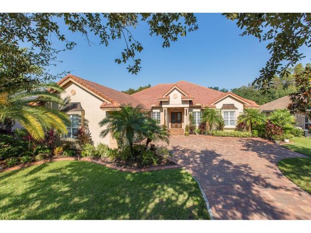 2848 Waters Edge Road, Palm Harbor, FL 34685 (MLS #U7833756) :: The Lockhart Team