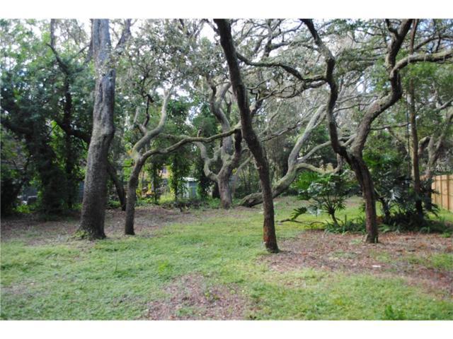 0 Friendship Lane, Odessa, FL 33556 (MLS #U7833846) :: Team Bohannon Keller Williams, Tampa Properties