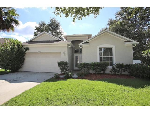19284 Wood Sage Drive, Tampa, FL 33647 (MLS #U7833874) :: Team Bohannon Keller Williams, Tampa Properties