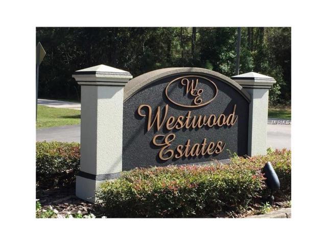 8105 Spring Forest Lane, Wesley Chapel, FL 33544 (MLS #U7835028) :: Arruda Family Real Estate Team