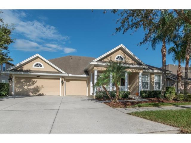 8538 Westerland Drive, Land O Lakes, FL 34637 (MLS #U7835295) :: Arruda Family Real Estate Team
