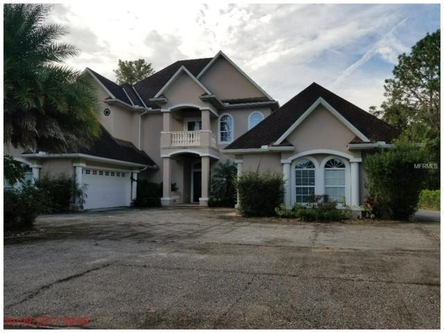 9416 Roberts Road, Odessa, FL 33556 (MLS #U7835474) :: Arruda Family Real Estate Team