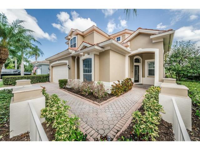 9823 Sago Point Drive, Seminole, FL 33777 (MLS #U7835528) :: The Signature Homes of Campbell-Plummer & Merritt