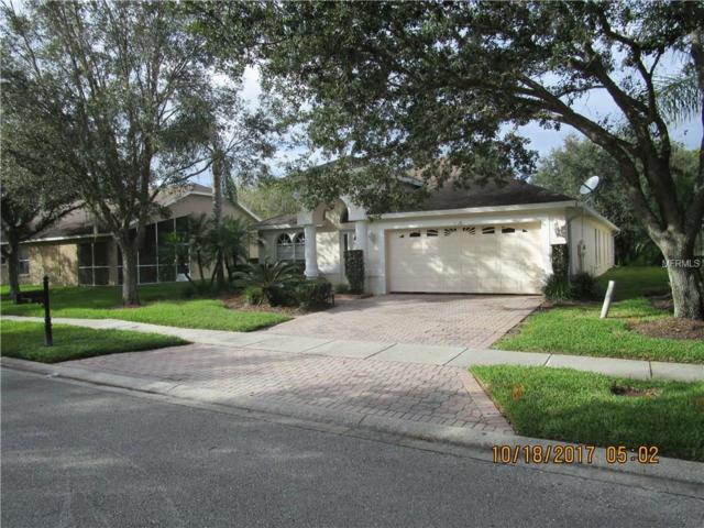 5128 Mayfair Park Court, Tampa, FL 33647 (MLS #U7835716) :: Team Bohannon Keller Williams, Tampa Properties